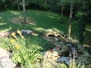 Landscaped waterfall in backyard